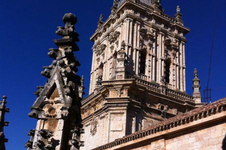 catedral-burgodeosma2.jpg